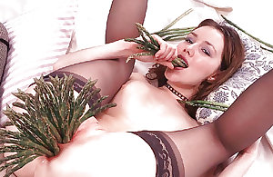 Stuffing My Pussy